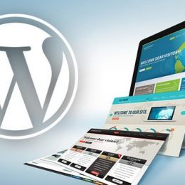 widget wordpress